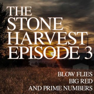 Episode 3 | Blow Flies, Big Red, and Prime Numbers