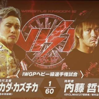 Running Wild Podcast:  Wrestling Awards 2017, NJPW Wrestle Kingdom 12 Preview