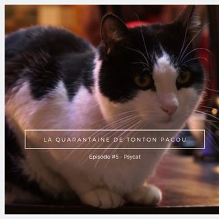 La Quarantaine de tonton Pagou - Episode #5 - Psycat
