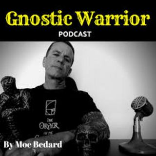 Moe Bedard on Archon Fungi the Counterfeit Spirit Accessing the Higher Mind