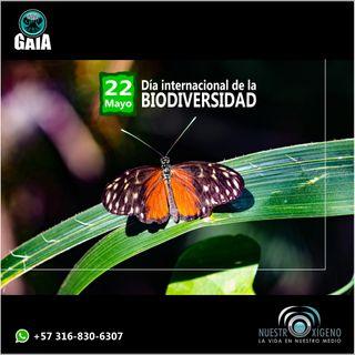 NUESTRO OXÍGENO 22 de mayo Día Internacional de la Biodiversidad