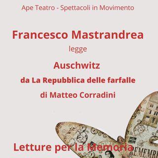 """Auschwitz. Da """"La Repubblica delle Farfalle"""" di Matteo Corradini"""