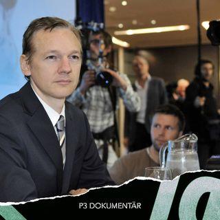 *NY* Wikileaks och Julian Assange