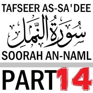 Soorah an-Naml Part 14 (Verses 87-93)