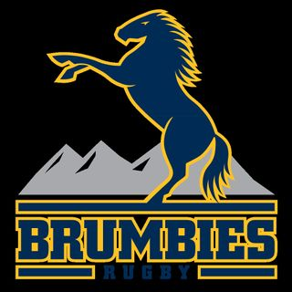 Brumbies Rd 10 2017 v Blues