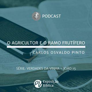 Verdades da Vinha - O Agricultor e o Ramo Frutifero - Carlos Osvaldo Pinto