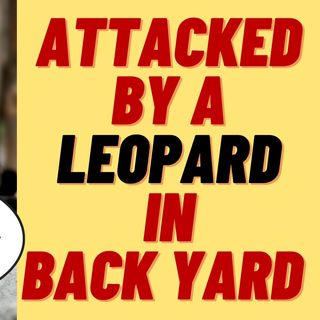 MAN PAYS $150 TO PLAY WITH BLACK LEOPARD - GETS MAULED