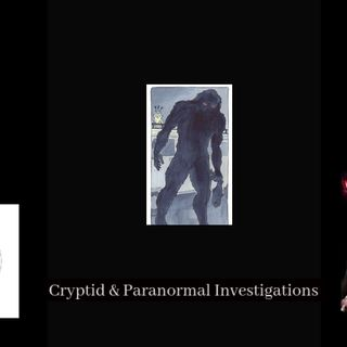Cryptid Creatures, UFO's and Silver man, Mysterious Tales from the East Coast of Scotland. Part 2