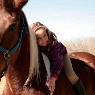 Terapias con animales