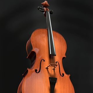 How to be a Great Cellist Quickly! Lecture by Sarnia de la Maré FRSA Free Download Pod-Class