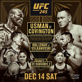 Preview Of The Huge UFC 235 Card Headlined By Kamaru Usman-Colby Covington For The Welterweight Title Plus Two More World Titlefight's Aswel