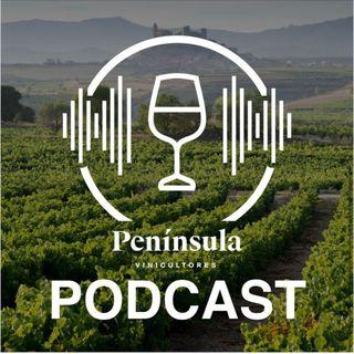 Capítulo 1. Transparencia en el mundo del vino. Una conversación entre Andreas Kubach MW, Tao Platon y Juancho Asenjo.