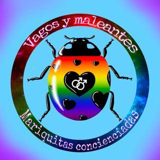 Vagos y maleantes, Especial Día contra la Homofobia, la Transfobia y la Bifobia