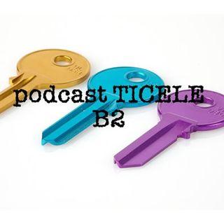 Podcast TICELE B2