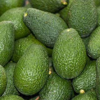 Letizia Bugini: «L'avocado è buonissimo, ma bisogna fare attenzione»