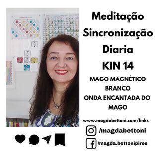 MEDITAÇÃO DE SINCRONIZAÇÃO - KIN 14- Mago Magnético Branco