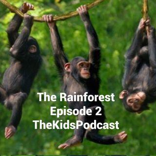 Episode 2: The Radical Rainforest