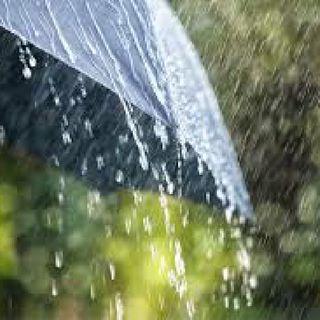 Rainy Day Story By OGSB - Shizzy's Lit Podcast