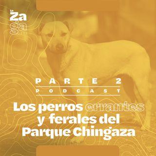 Ep 2: Los perros errantes y ferales del Parque Chingaza