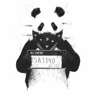 Radio Patata #1(sin Audio)xdd