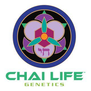 ChaiLifeGenetics Ras Daniel