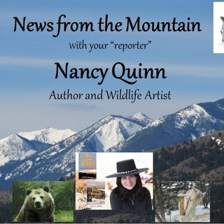 Debut Show of News From the Mountain with Author and Artist Nancy Quinn