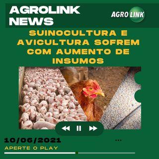 Podcast: Alta dos insumos preocupa setores da suinocultura e avicultura