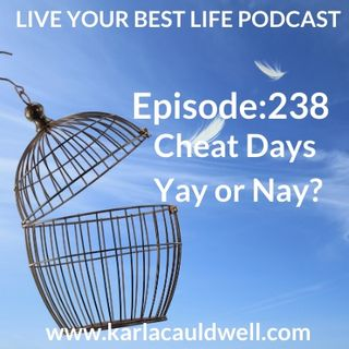 Ep 238 - Cheat Days Yay or Nay