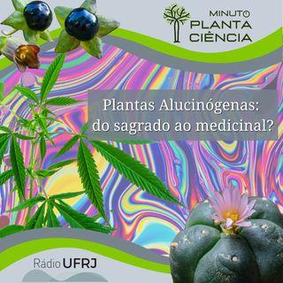 Minuto PlantaCiência - Ep. 17 - Plantas alucinógenas: do sagrado ao medicinal? (Rádio UFRJ)