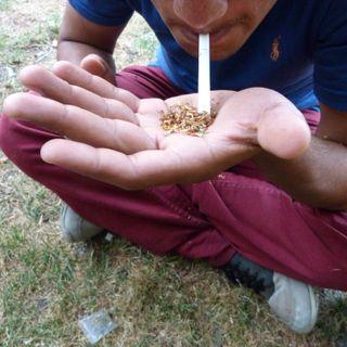 Approfondimenti - Bonzas, la droga dei poveri