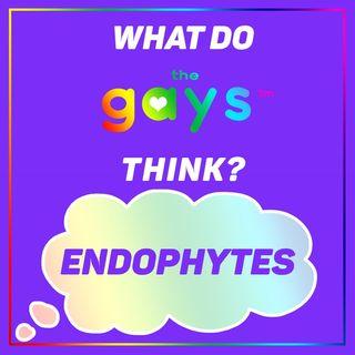 Endophyte? I Endo-might!