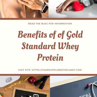 What are the benefits of Gold Standard Whey Protein?