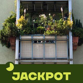 JACKPOT 06