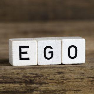 Special Report: Ego Fest VI