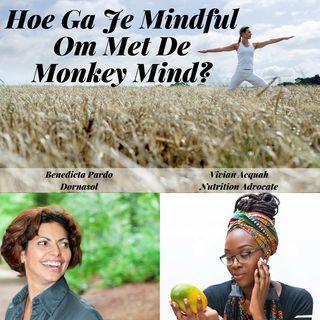 Hoe Ga Je Mindful Om Met De Monkey Mind? Met Benedicta Pardo