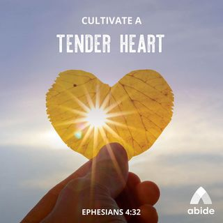 Cultivating a Tender Heart