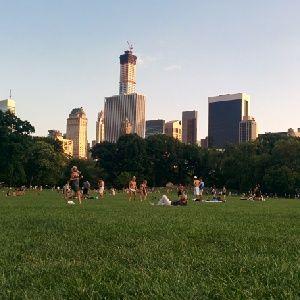 Día de picnic en Central Park