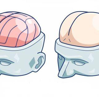 Mind The Crap