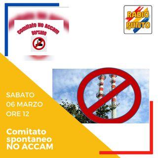 Le ragioni del NO ACCAM: COMITATO NO ACCAM di Borsano. PARTE 2.