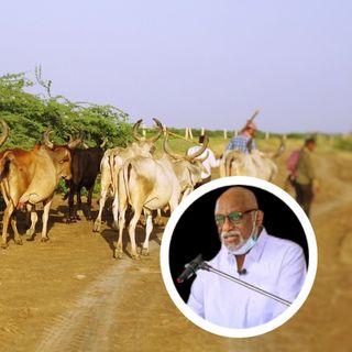NIGERIA: Akeredolu Asks Herdsmen To Vacate Ondo Forest Reserves