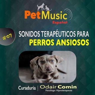 #07 Sonidos Terapéuticos para Perros con Ansiedad
