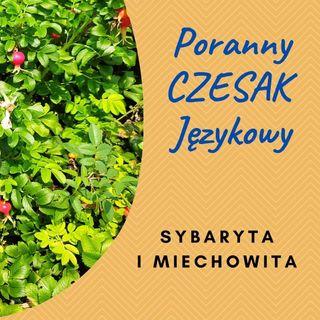 PCJ 2021-09-02 SYBARYTA I MIECHOWITA