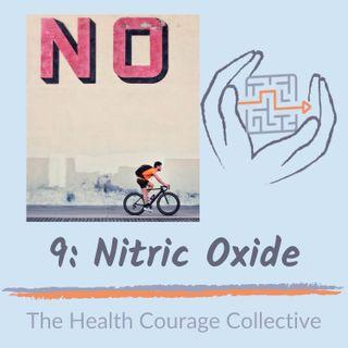 9: Nitric Oxide