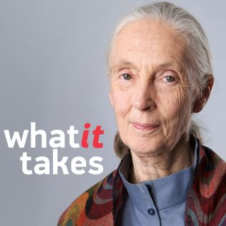 Jane Goodall: A Dedicated Pursuit