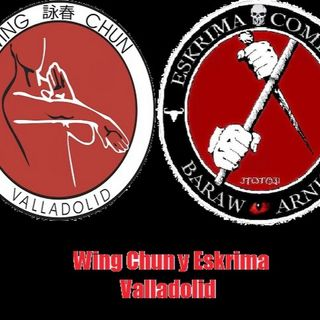 Cuestionario a instructor de Wing Chung
