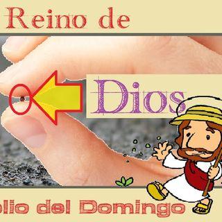 El Reino de Dios - Evangelio del 17/06/2018 - Domingo XI del Tiempo Ordinario - Mc 4, 26-34