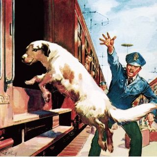 Lampo, el perro ferroviario