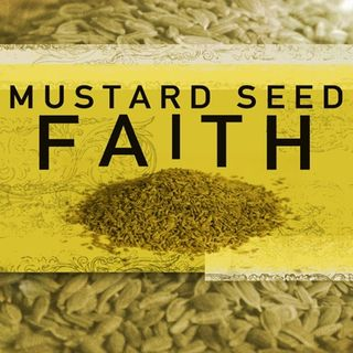 Can faith fail 5