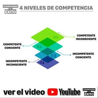 4 niveles de Competencia
