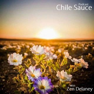 Chile Sauce with Zen Delaney on Lingo Radio Friday 12 June 2020
